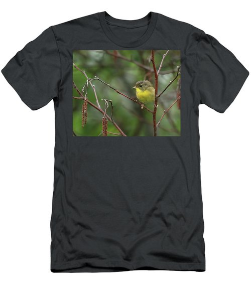 Yellowthroated Warbler Men's T-Shirt (Athletic Fit)