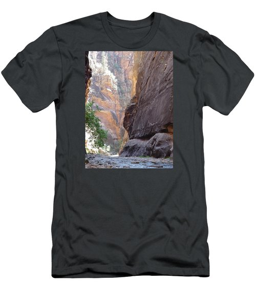 Zion Awe Men's T-Shirt (Athletic Fit)