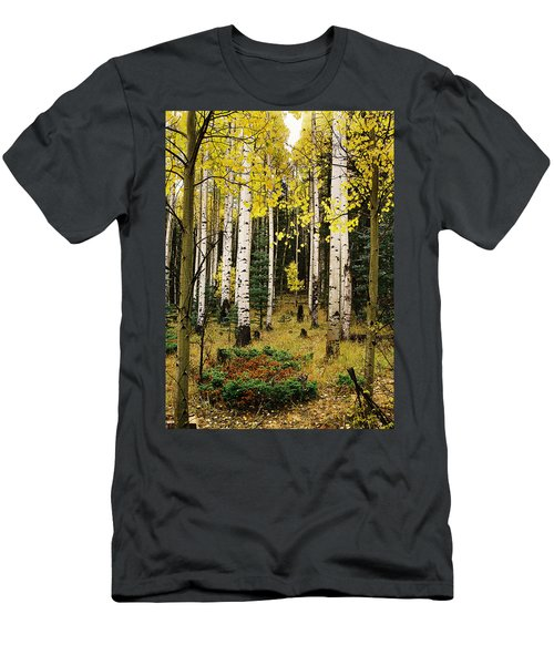 Aspen Grove In Upper Red River Valley Men's T-Shirt (Athletic Fit)