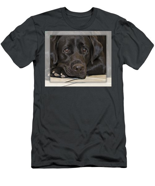 Labrador Retriever A1a Men's T-Shirt (Athletic Fit)