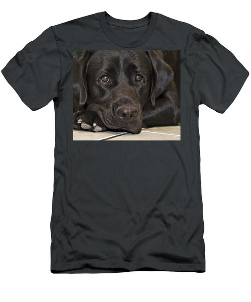 Labrador Retriever A1b Men's T-Shirt (Athletic Fit)