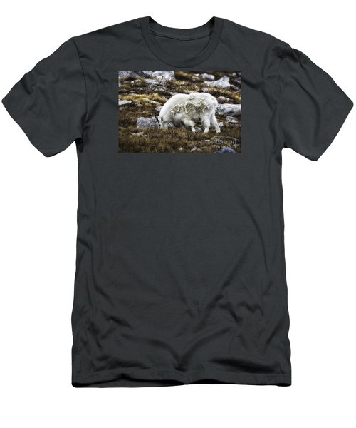 Rocky Mountain Goat Men's T-Shirt (Athletic Fit)
