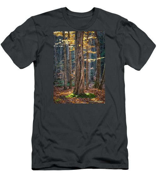 #0187 - Dummerston, Vermont Men's T-Shirt (Athletic Fit)