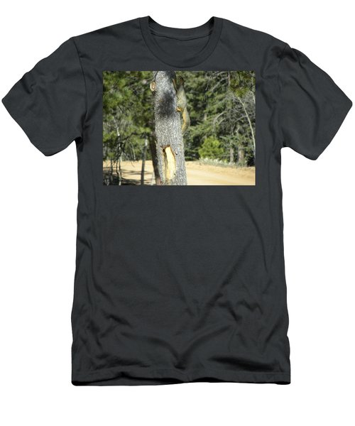 Men's T-Shirt (Athletic Fit) featuring the photograph Squirrel Home Divide Co by Margarethe Binkley