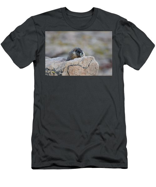 Men's T-Shirt (Athletic Fit) featuring the photograph Marmot Mnt Evans Evergreen Co by Margarethe Binkley