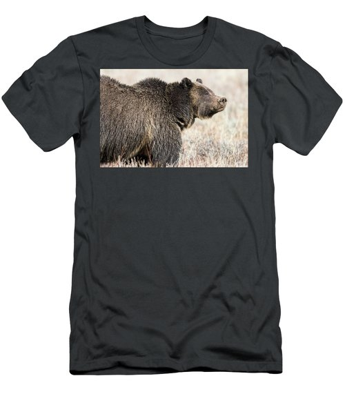 All Seems Beautiful Men's T-Shirt (Athletic Fit)