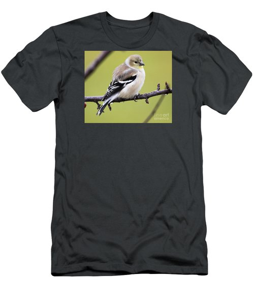 American Goldfinch Men's T-Shirt (Slim Fit) by Ricky L Jones