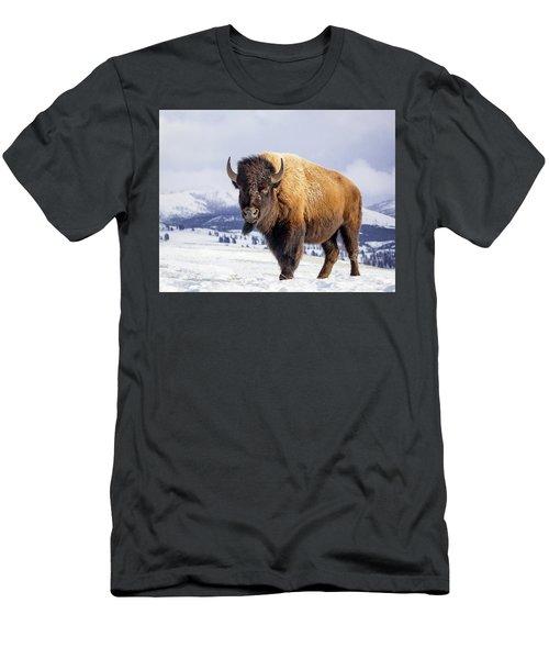 American Legend Men's T-Shirt (Athletic Fit)