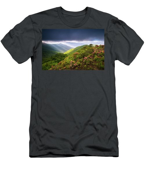 Asheville Nc Blue Ridge Parkway Spring Flowers North Carolina Men's T-Shirt (Athletic Fit)