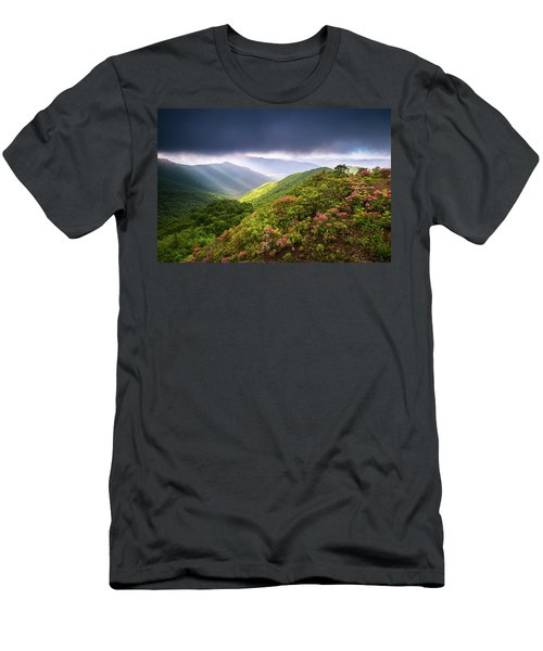 Asheville Nc Blue Ridge Parkway Spring Flowers North Carolina Men's T-Shirt (Athletic Fit)