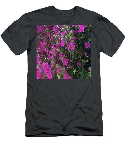 Azaleas Men's T-Shirt (Slim Fit) by Kay Gilley