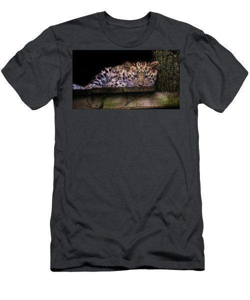 Baby Amur Leopard Men's T-Shirt (Athletic Fit)