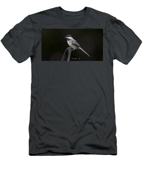 Black-capped Chickadee Men's T-Shirt (Slim Fit) by Diane Giurco