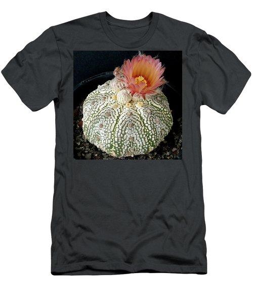 Cactus Flower 4 Men's T-Shirt (Slim Fit) by Selena Boron
