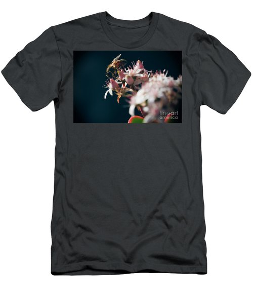 Men's T-Shirt (Slim Fit) featuring the photograph Crassula Ovata Flowers And Honey Bee  by Sharon Mau