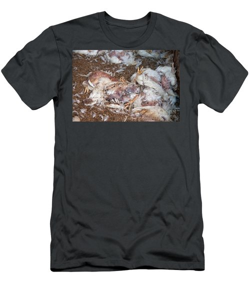 Dead Chickens At Poultry Farm Men's T-Shirt (Athletic Fit)