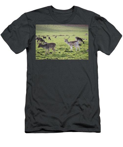 Deer In Richmond Park Men's T-Shirt (Athletic Fit)