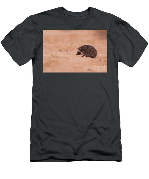 Desert Hedgehog Paraechinus Aethiopicus Men's T-Shirt (Athletic Fit)