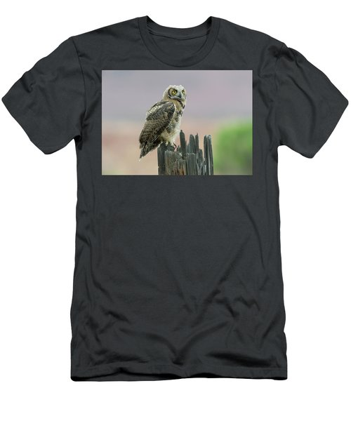 Ethereal Men's T-Shirt (Slim Fit) by Scott Warner