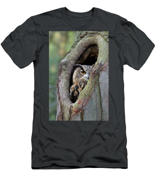 Men's T-Shirt (Athletic Fit) featuring the photograph Eurasian Eagle-owl Bubo Bubo Looking by Rob Reijnen