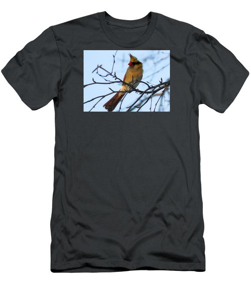 Men's T-Shirt (Slim Fit) featuring the photograph Female Northern Cardinal by Ricky L Jones