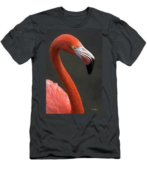 Flamingo Men's T-Shirt (Athletic Fit)