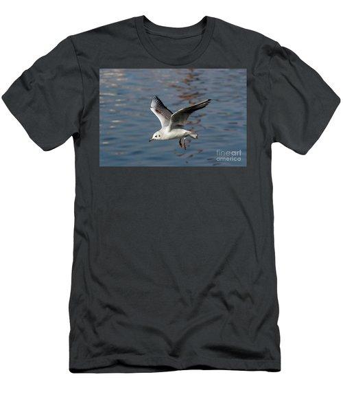 Flying Gull Men's T-Shirt (Athletic Fit)