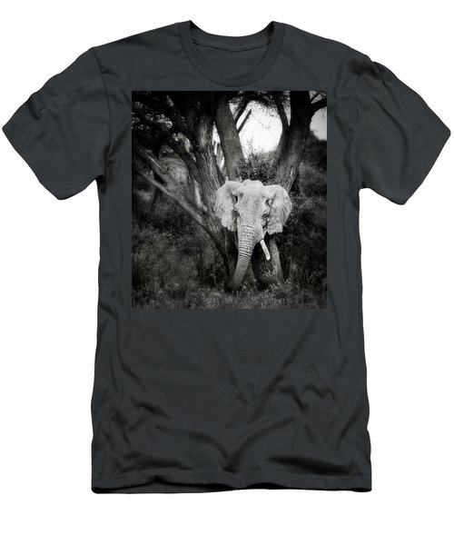 Ganesh As A Tree Men's T-Shirt (Athletic Fit)