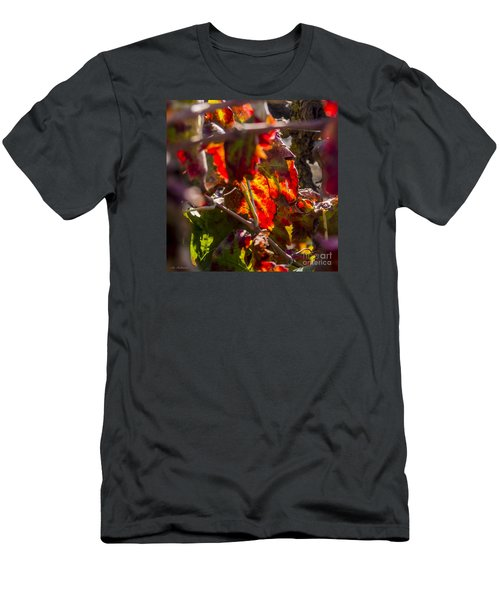Men's T-Shirt (Slim Fit) featuring the photograph Hot Autumn Colors In The Vineyard 05 by Arik Baltinester