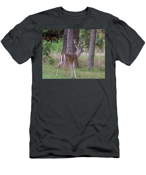 Large Buck Men's T-Shirt (Athletic Fit)