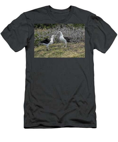 Laysan Albatross Hawaii #2 Men's T-Shirt (Athletic Fit)
