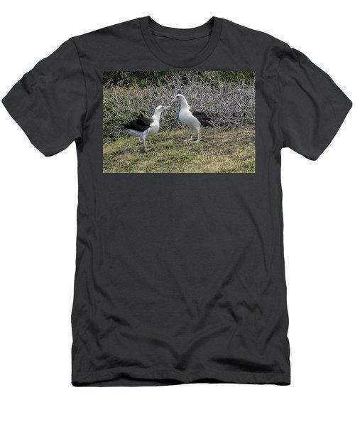 Laysan Albatross Hawaii #2 Men's T-Shirt (Athletic Fit)