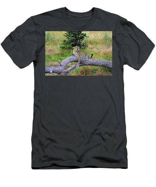 Leopard - Botswana, Africa Men's T-Shirt (Athletic Fit)