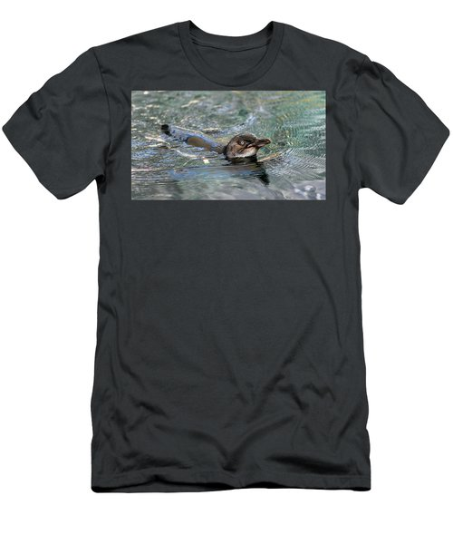 Little Penguin In The Water Men's T-Shirt (Athletic Fit)