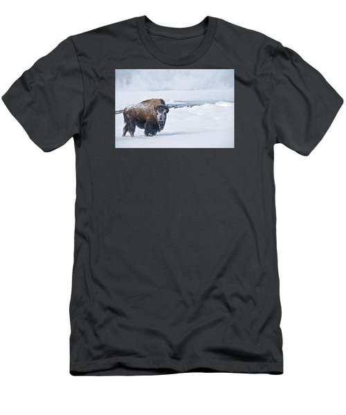 Lone Bison Men's T-Shirt (Slim Fit) by Gary Lengyel