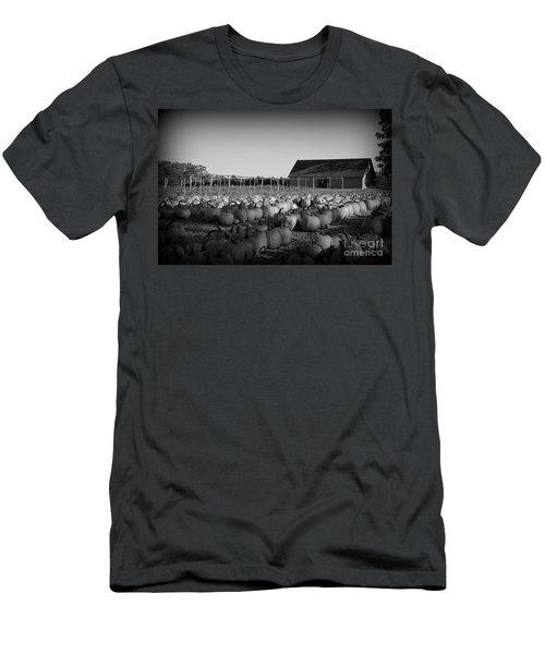 Make Way For Pumpkins Men's T-Shirt (Slim Fit) by Barbara Bardzik