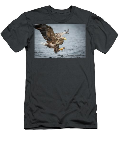 Male White-tailed Eagle Men's T-Shirt (Athletic Fit)