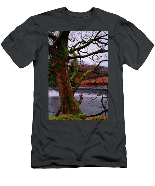 Mossy Tree Leaning Over The Smooth River Wharfe Men's T-Shirt (Athletic Fit)