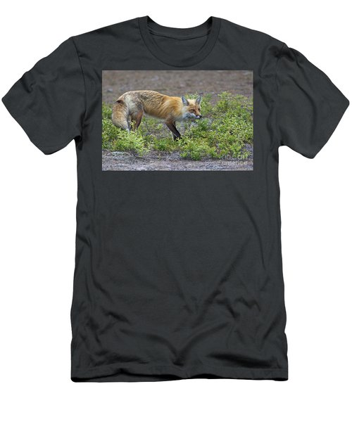 On The Prowl.. Men's T-Shirt (Athletic Fit)