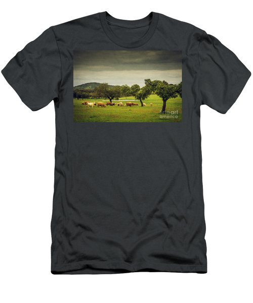 Pasturing Cows Men's T-Shirt (Athletic Fit)