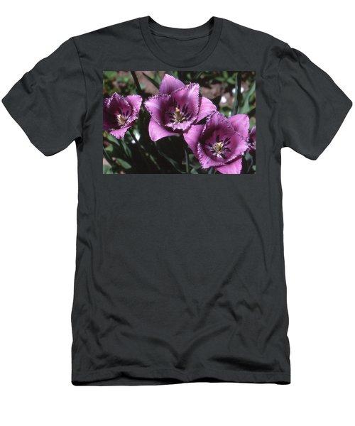 Purple Flowers Two  Men's T-Shirt (Slim Fit) by Lyle Crump