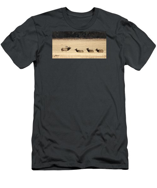 Rocky Mountain Elk Men's T-Shirt (Athletic Fit)