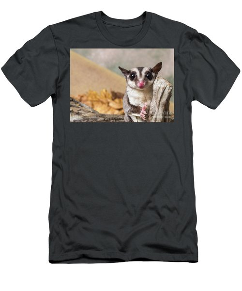 Sugar Glider  Men's T-Shirt (Athletic Fit)