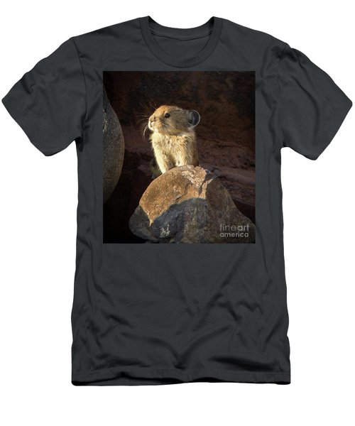 The Coast Is Clear Wildlife Photography By Kaylyn Franks Men's T-Shirt (Athletic Fit)