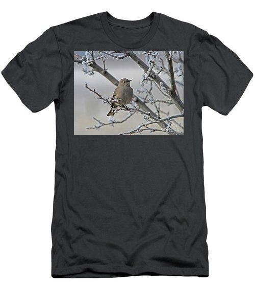 Townsend's Solitaire Men's T-Shirt (Athletic Fit)