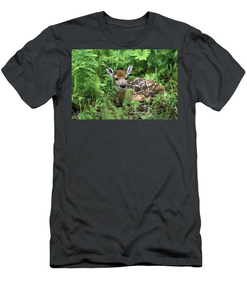 White-tailed Deer Odocoileus Men's T-Shirt (Athletic Fit)