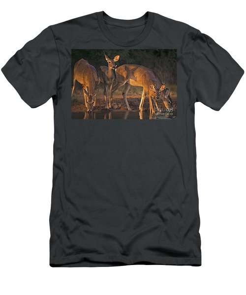 Whitetail Deer At Waterhole Texas Men's T-Shirt (Athletic Fit)