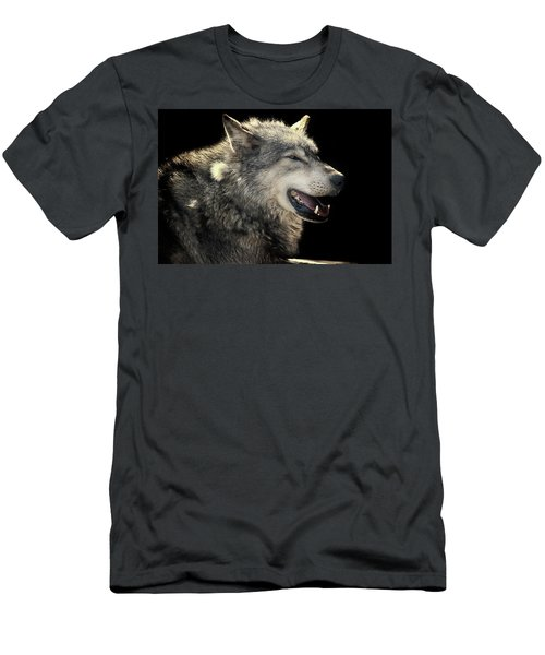 Wolf Rock Men's T-Shirt (Athletic Fit)