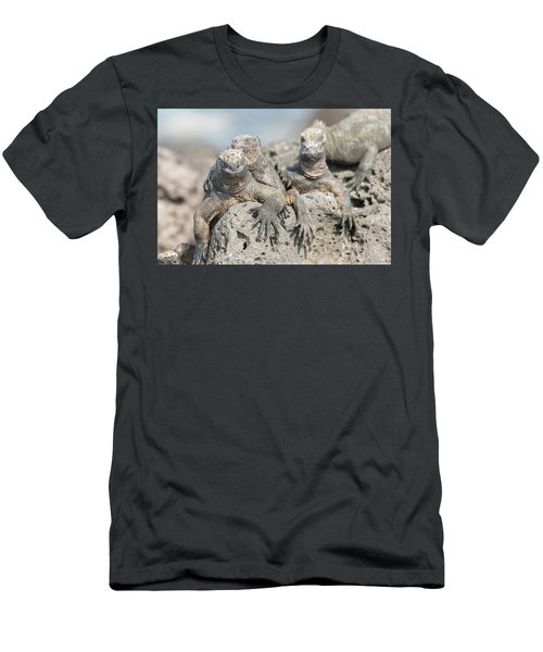Marine Iguana On Galapagos Islands Men's T-Shirt (Slim Fit) by Marek Poplawski