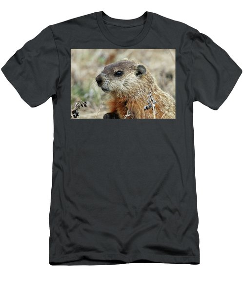 Woodchuck Calverton New York Men's T-Shirt (Athletic Fit)